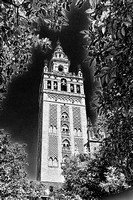 Bell Tower Seville  2