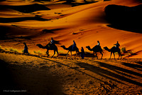 Caravan At Sunset Sahara Desert 1A signed